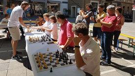 Schach(t)räume - Bretter, die die Welt bedeuten
