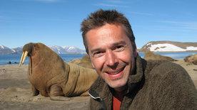 Steffens entdeckt: Grönland
