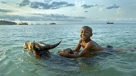 Über den Inseln Afrikas - Madagaskar