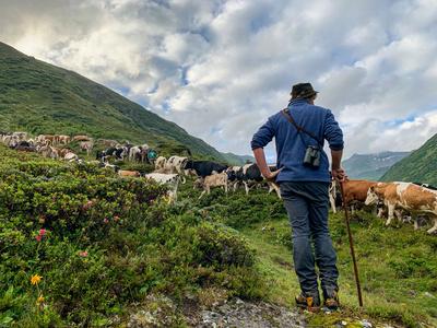 Vom Leben und Arbeiten im Hochgebirge