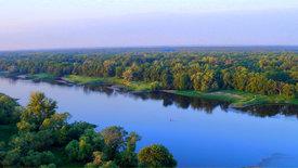 Unsere Wälder - Die Wasserwälder der Mittelelbe