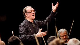 Nikolaus Harnoncourt - Die Musik meines Lebens