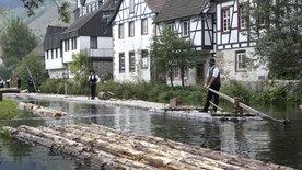 Der Rhein (1/2)