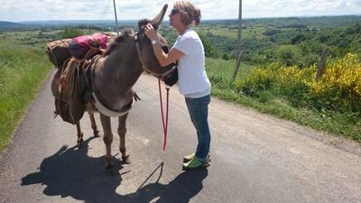 Mit dem Esel auf dem Jakobsweg