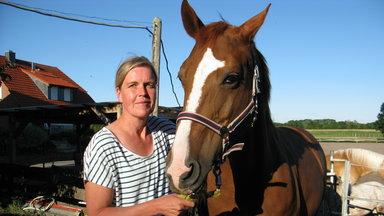 Terra Xpress - Der Hausboot-krimi Und Das Verschwundene Pferd