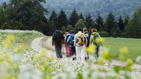 Einkehr vor der Haustür -<br/>Oberösterreichs schönste Pilgerrouten
