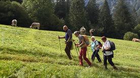 Nächstenliebe im Praxistest - Die Caritas Vorarlberg