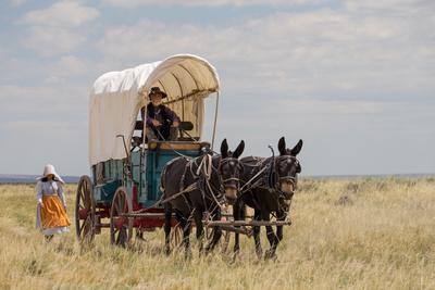 Wilder Westen: Great Plains