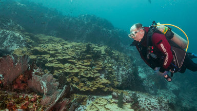 Planet E. - Die Meeresschützer