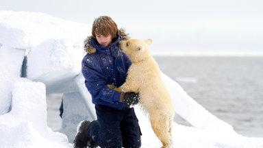 Filme - Midnight Sun - Eisbär Auf Reisen