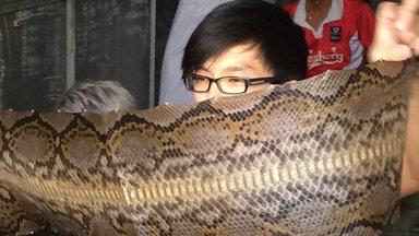 Planet E. - Planet E.: Schlangenhäute Für Den Luxus