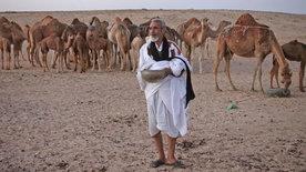 Männer der Wüste - Mit Kamelhirten durch die Sahara