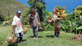 mare TV:  Die Britischen Jungferninseln