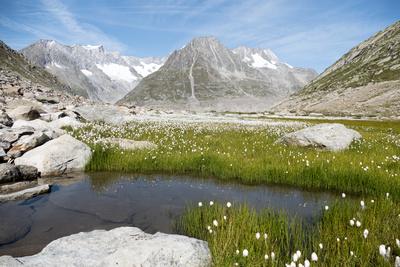 Unsere wilde Schweiz (2/4)