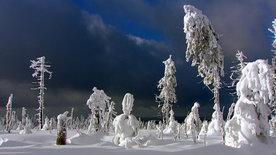 Winter im Südwesten