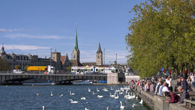 Grüezi Zürich