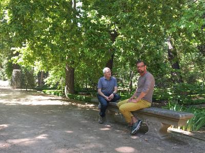 Historisch bis modern - Spanische Gartenkunst
