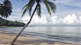 Zu Gast in Thailand