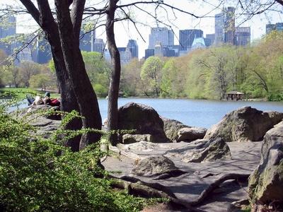 Central Park - Das Herz Manhattans