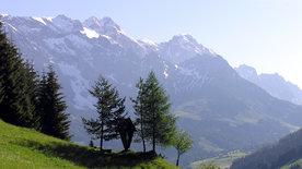 Hochkönig - Bergwelt zwischen Pinzgau und Pongau