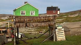 Menschen am Rande der Welt - Grönland