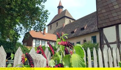 Geheimnisvolle Klostergärten