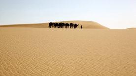 Die Farben der Wüste: Die gelbe Sahara