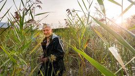SCHWEIZWEIT: Das Sumpfgebiet des Neuenburgersees