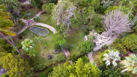 Die tropischen Gärten Europas