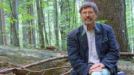 Europas Urwälder: Bayerns neue Wildnis