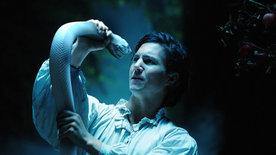 Die weiße Schlange