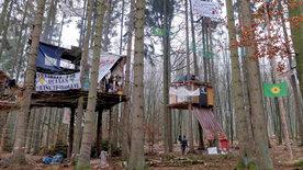 Generation Waldbesetzer  - im Baumhaus gegen<br/>die Klimakrise