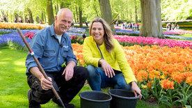 Romantisches Holland - Zwischen Tulpenpracht und Königskrone