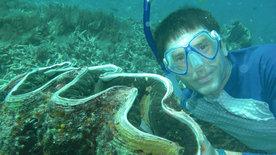 Steffens entdeckt: Palau