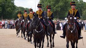 Die Pferde der Queen