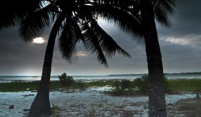 Wilde Inseln: Sansibar
