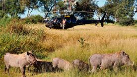 Traumflug durch Afrika - Von Kapstadt nach Kenia (2/2)