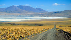 Söhne der Wüste - Durch die Atacama