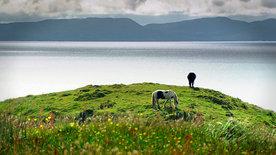 Schottland - Rebellen im Rock