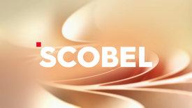 scobel - Auge, Gehirn, Bewusstsein