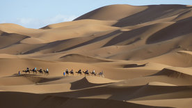 Faszination Afrika: Marokko - Karawanenwege<br/>durch die Wüste