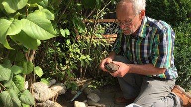 Terra Xpress - Meteorit Im Garten Und Das Käsekuchen-rätsel