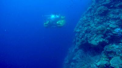 Extreme der Tiefsee