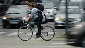 Der Fahrradboom: Die neue Freiheit auf zwei Rädern?!